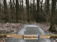 Parking area for Muntjac wood