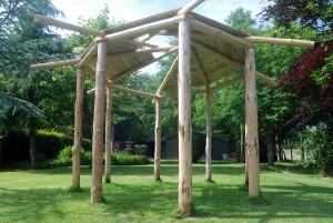 A wooden summerhouse: part 3, a green roof.