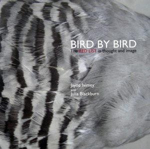 Bird by Bird - about the threats to wild birds