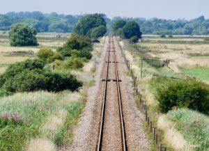 railway line equals a biological corridor