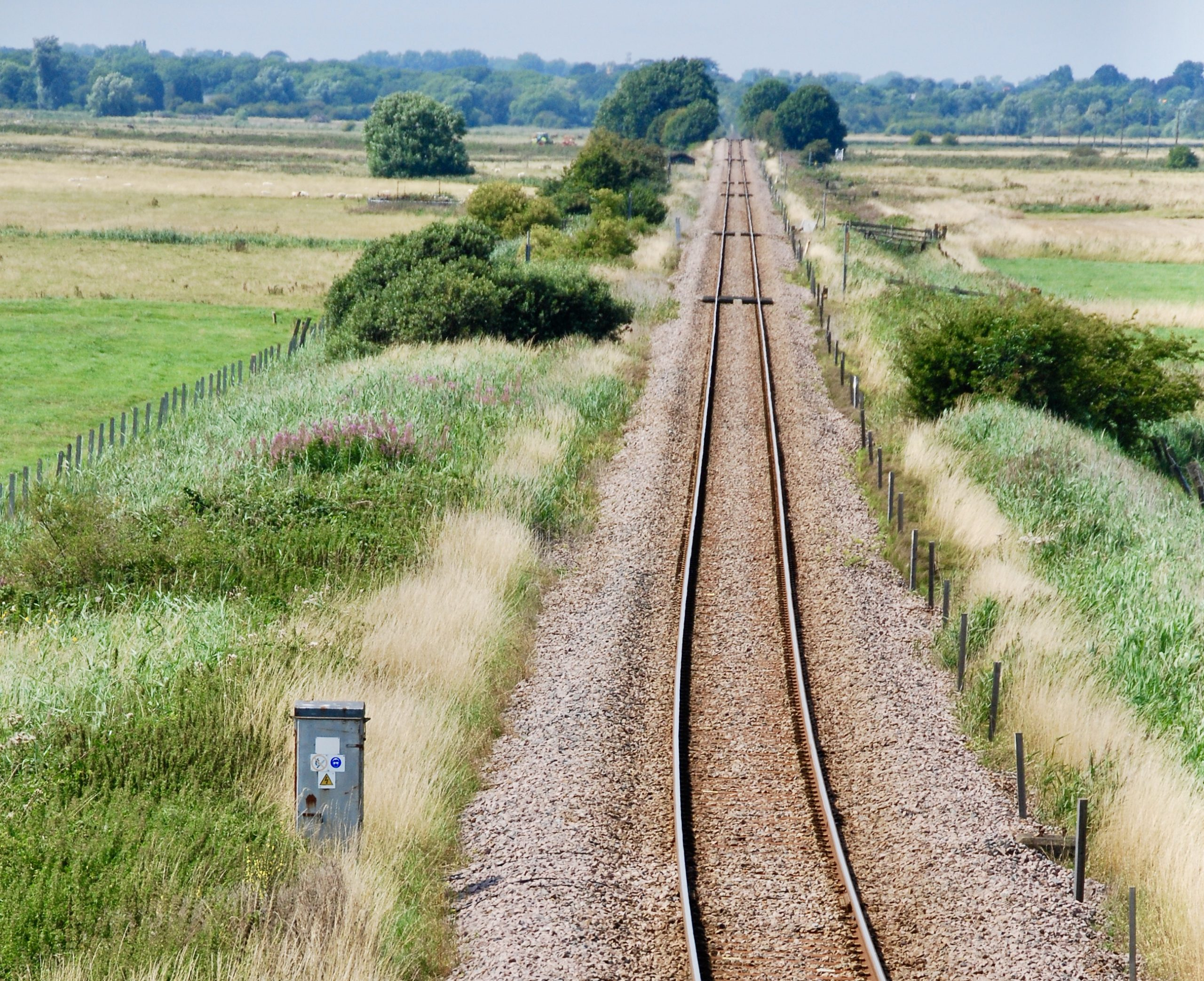 railway lines act as biological corridors