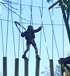 Branching Out Adventures competing with Go-Ape in East Sussex