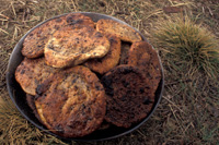 How to Make Wild Bannock Bread