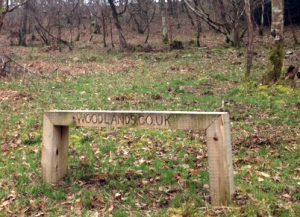 Benches in Woodlands - different seating designs