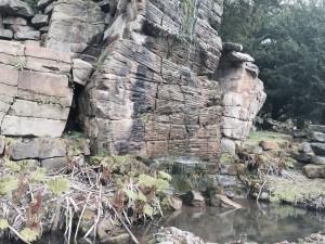 Chatsworth Arboretum and Pinetum - highly managed woodlands