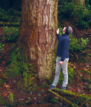 A Model for Sustainable Woodland Ownership