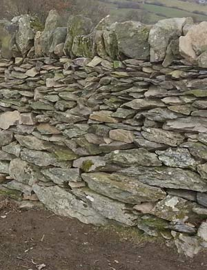 Dry Stone Walling, on a National Trust Working Holiday