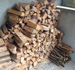Potential for firewood and woodfuel from South East England - according to Matthew Woodcock