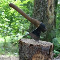 Forestry Hand Tools