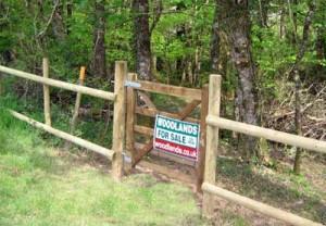 Woodland pedestrian gates (2)