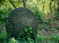 Green Burial – can I be buried in my woodland?