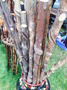 Making walking sticks - from stems picked out of the woodlands