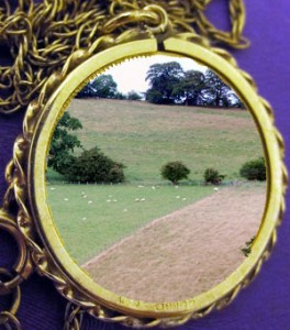 """Is land the """"new gold"""" for investors?  What might this mean for woodland owners"""