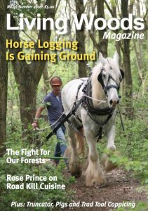 living-woods-40-summer-16-cover