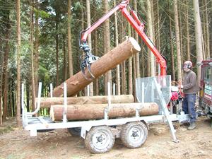 loading-the-trailer