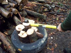 logs tyre and axe