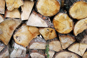 Firewood – the real challenge is moving the logs to where you need them