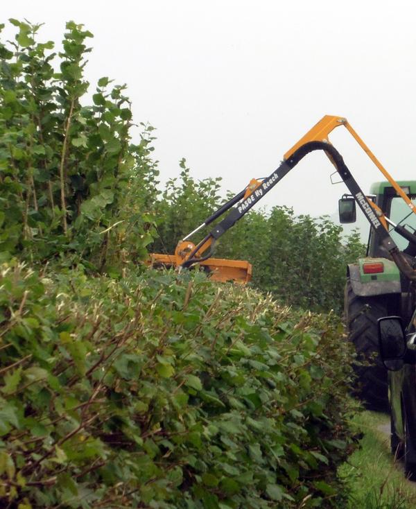 mechanical-hedge-flailing