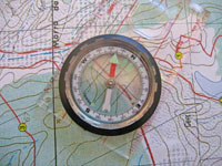 Orienteering and Woodlands