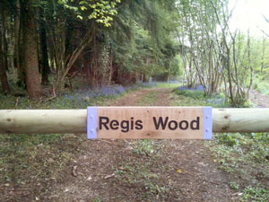 Owning Regis Wood