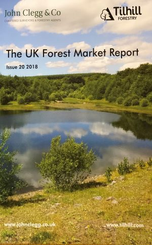 UK Forest Market Report - timber and forestry prices on the increase