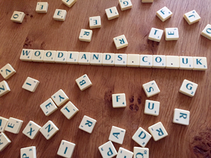 Scrabble blog : Part 2 letters I – Q by Bella and Stuart.