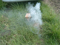 Bee Friendly! Part 2 - Smoking the Hive