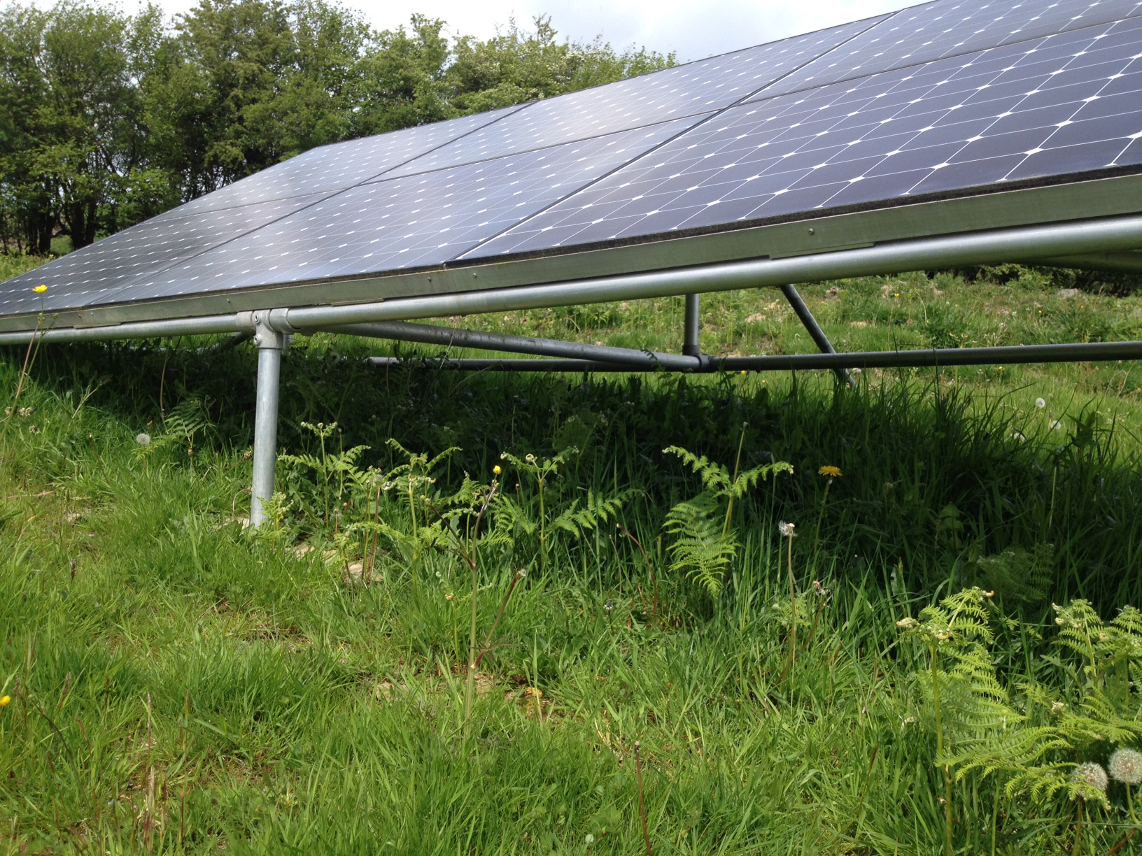 Solar Panels In Woodlands And Fields Are They Good Or