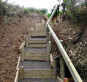 Woodland steps - part 2