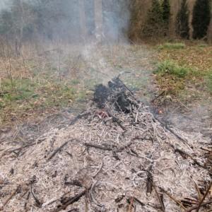 tortworth fire
