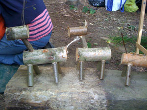 Making wooden animals in your woodland