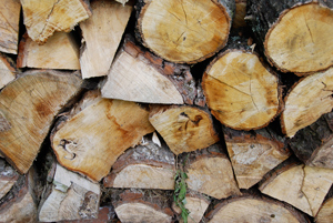 Woodfuel Strategy